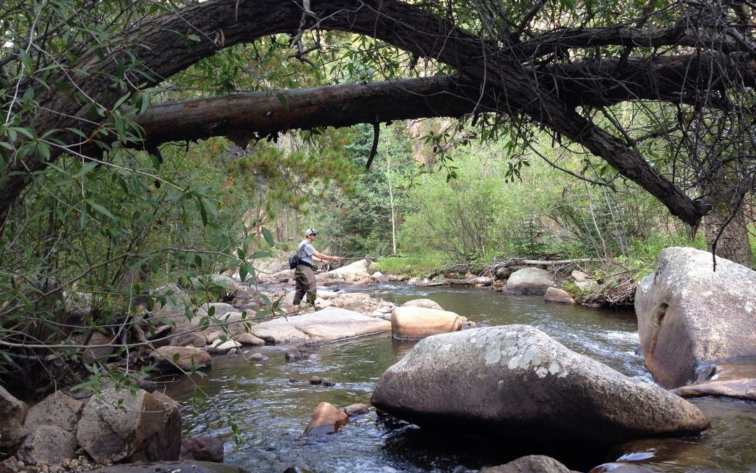 Colorado Trails and Back Country Fishing